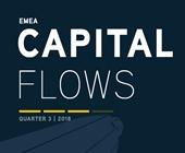 emea capitalflow2