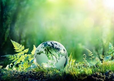 A jövő vállalata / Sustainable World, 2021. szeptember 7.